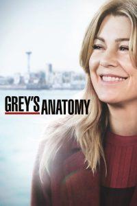 Chirurdzy (Grey's Anatomy) PL