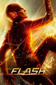 DC: Flash PL