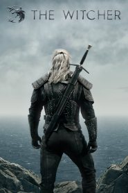 The Witcher (Wiedźmin) PL
