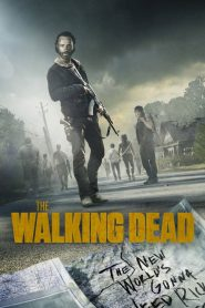 The Walking Dead PL