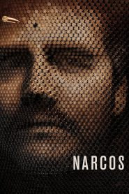 Narcos PL