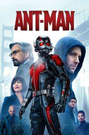 Ant-Man 2015 PL