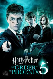 Harry Potter i Zakon Feniksa 2007 PL