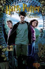 Harry Potter i więzień Azkabanu 2004 PL