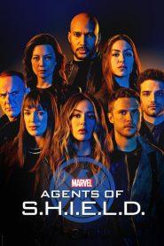 Marvel: Agenci T.A.R.C.Z.Y. PL