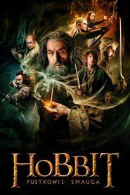 Hobbit: Pustkowie Smauga 2013 PL