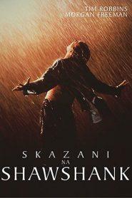 Skazani na Shawshank 1994 PL