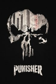 Marvel: Punisher PL