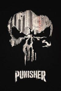 Marvel: Punisher PL