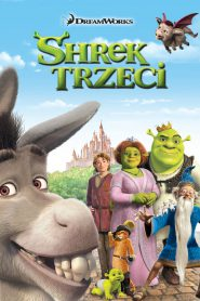 Shrek Trzeci 2007 PL