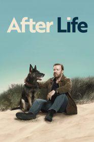 After Life PL