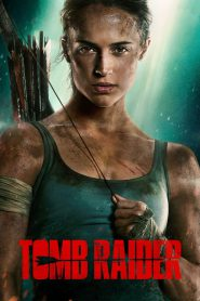 Tomb Raider 2018 PL