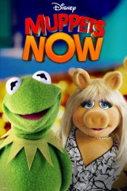 Muppets Now PL