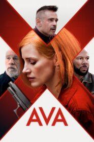 Ava 2020 PL