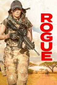 Rogue 2020 PL