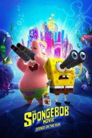 SpongeBob Film: Na ratunek 2020 PL