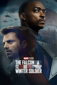 The Falcon and the Winter Soldier PL